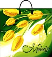 Пакет с пласт. руч., лам. 38х35  МЕЛОДИЯ, 1*10 (100) Н