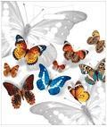 Пакет с проруб.ручкой 40х47, Бабочки, 45 мкм, 1*50 (1000)