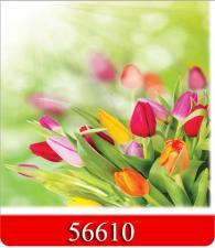 Салфетки 20 л. 33х33, 3-х сл., 16 уп/кор., Арт. 56610